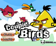 Couple birds