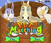 Pet Matching