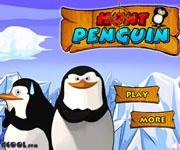 Hunt Penguins
