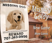 Missing Goldy