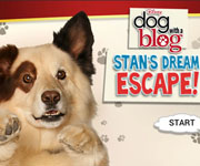 Dog With a Blog Stan Escapes