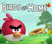 Birds Get Home