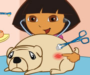 Dr Dora Saves The Dogs
